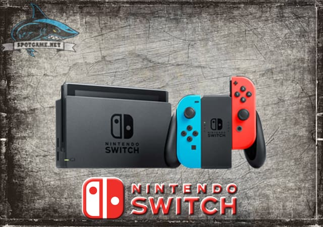Nintendo Switch Spotgame